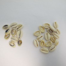 150 Spacers half shell 18mm approximately