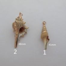 10 pcs seashell pendant